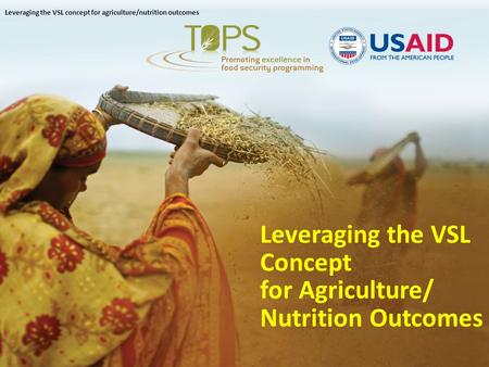 Leveraging the VSL Concept for Agriculture/ Nutrition Outcomes Leveraging the VSL concept for agriculture/nutrition outcomes.