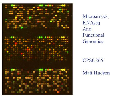 Microarrays, RNAseq And Functional Genomics CPSC265 Matt Hudson.