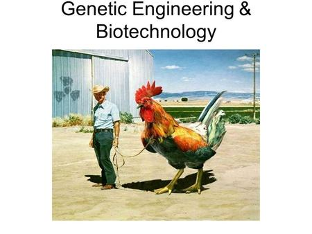 Genetic Engineering & Biotechnology