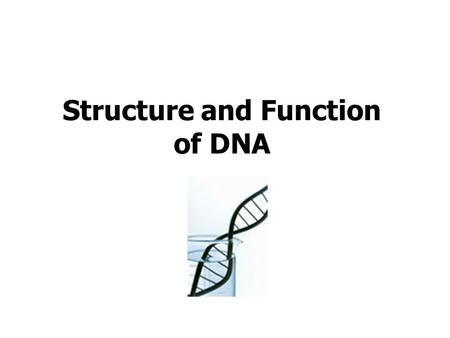Structure and Function of DNA. 1 2 3 4 5 6 7 8 9 10.