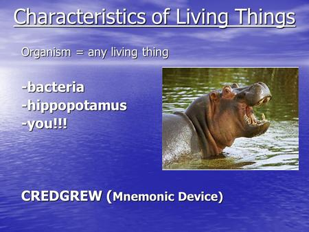 Characteristics of Living Things Organism = any living thing -bacteria-hippopotamus-you!!! CREDGREW ( Mnemonic Device)