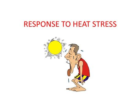 RESPONSE TO HEAT STRESS. Thermoregulation Definition: Mechanisms behind temperature regulation -Humans, like all mammals (and birds) are homeotherms,