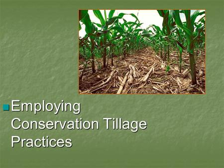 Employing <strong>Conservation</strong> Tillage Practices Employing <strong>Conservation</strong> Tillage Practices.