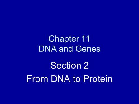Chapter 11 DNA and Genes Section 2 From DNA to Protein.