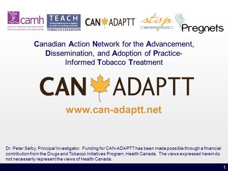 1 Canadian Action Network for the Advancement, Dissemination, and Adoption of Practice- Informed Tobacco Treatment www.can-adaptt.net Dr. Peter Selby,