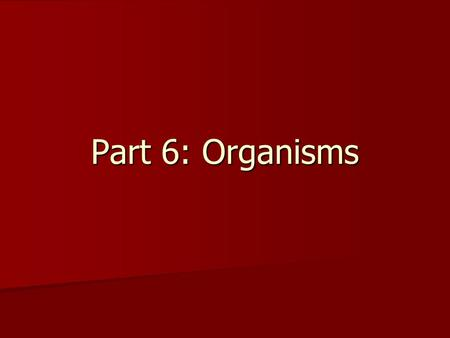 Part 6: Organisms. What is Life? Brainstorm: What do all living things have in common? Brainstorm: What do all living things have in common?