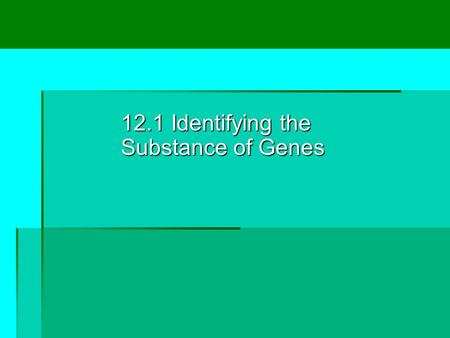 12.1 Identifying the Substance of Genes. Lesson Overview Lesson Overview Identifying the Substance of Genes THINK ABOUT IT How do genes work? To answer.