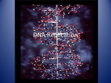DNA Replication. I. Terms: A. Genes- the segments of DNA that are the units of inheritance.