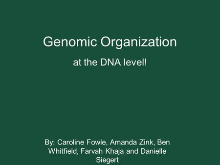 Genomic Organization at the DNA level! By: Caroline Fowle, Amanda Zink, Ben Whitfield, Farvah Khaja and Danielle Siegert.