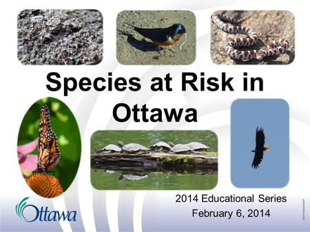 Species at Risk in Ottawa 2014 Educational Series February 6, 2014.