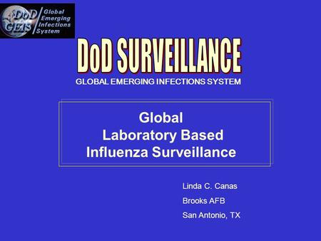 Global Laboratory Based Influenza Surveillance Linda C. Canas Brooks AFB San Antonio, TX GLOBAL EMERGING INFECTIONS SYSTEM.