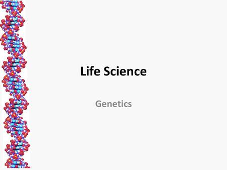 Life Science Genetics. Genetics The study of heredity, how traits are passed from parent to offspring x = or.