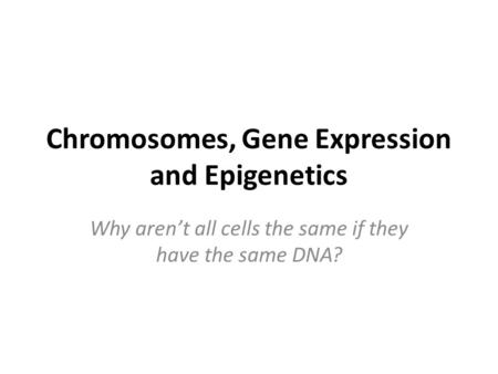 Chromosomes, Gene Expression and Epigenetics