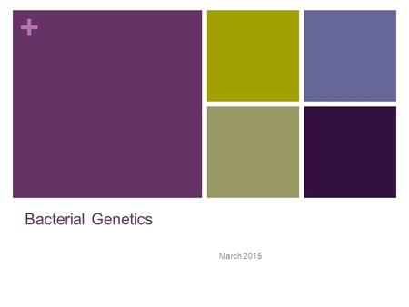 + Bacterial Genetics March 2015. + Terminology Genetics: The study of what genes are, how they carry information, how information is expressed, and how.