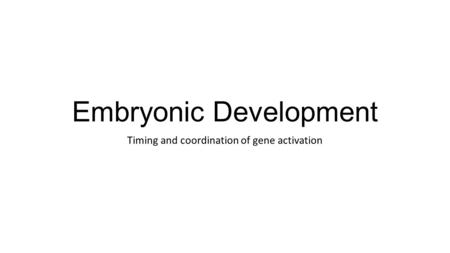Embryonic Development Timing and coordination of gene activation.