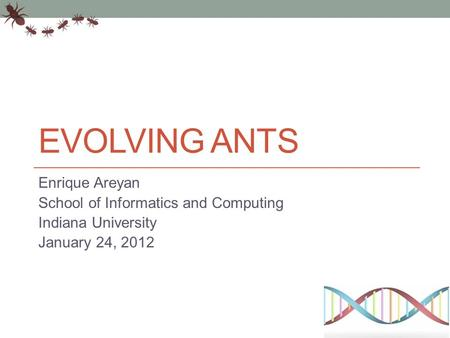 EVOLVING ANTS Enrique Areyan School of Informatics and Computing Indiana University January 24, 2012.