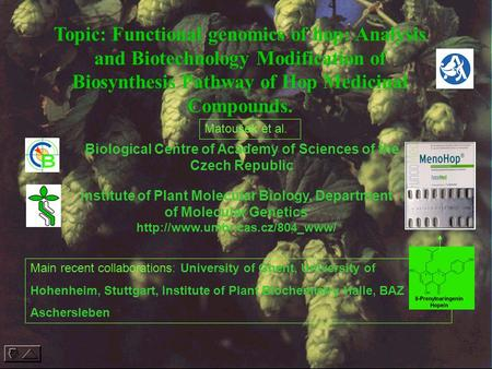 Topic: Functional genomics of hop: Analysis and Biotechnology Modification of Biosynthesis Pathway of Hop Medicinal Compounds. Biological Centre of Academy.
