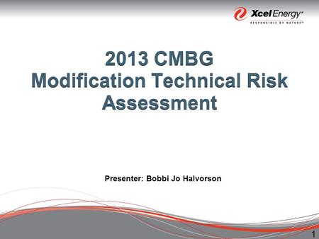 1 2013 CMBG Modification Technical Risk Assessment Presenter: Bobbi Jo Halvorson.