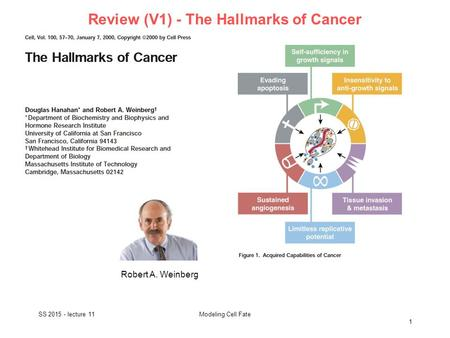 Review (V1) - The Hallmarks of Cancer SS 2015 - lecture 11 1 Modeling Cell Fate Robert A. Weinberg.