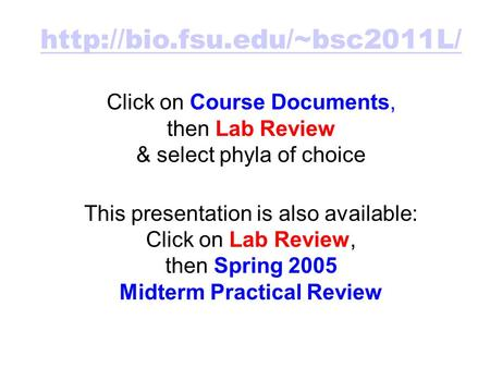 Click on Course Documents, then Lab Review & select phyla of choice This presentation is also available: Click on Lab Review,