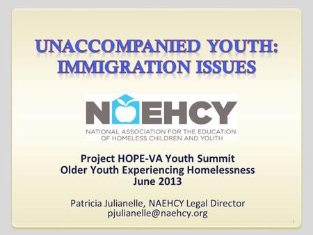 Project HOPE-VA Youth Summit Older Youth Experiencing Homelessness June 2013 Patricia Julianelle, NAEHCY Legal Director 1.