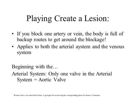 Playing Create a Lesion: If you block one artery or vein, the body is full of backup routes to get around the blockage! Applies to both the arterial aystem.