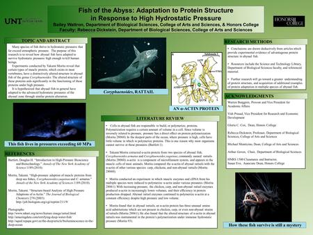 Fish of the Abyss: Adaptation to Protein Structure in Response to High Hydrostatic Pressure Bailey Wattron, Department of Biological Sciences, College.