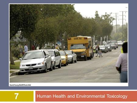 Human Health and Environmental Toxicology 7. © 2012 John Wiley & Sons, Inc. All rights reserved. Overview of Chapter 7  Human Health  In developed countries.