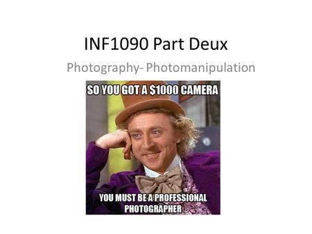 INF1090 Part Deux Photography- Photomanipulation.