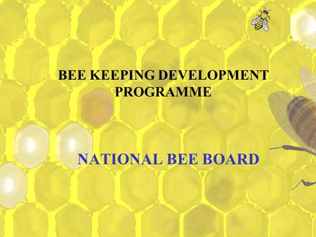 BEE KEEPING DEVELOPMENT PROGRAMME
