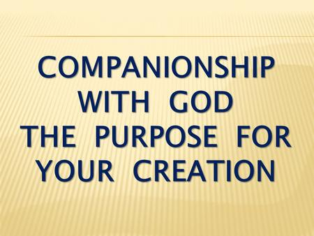COMPANIONSHIP WITH GOD THE PURPOSE FOR YOUR CREATION.