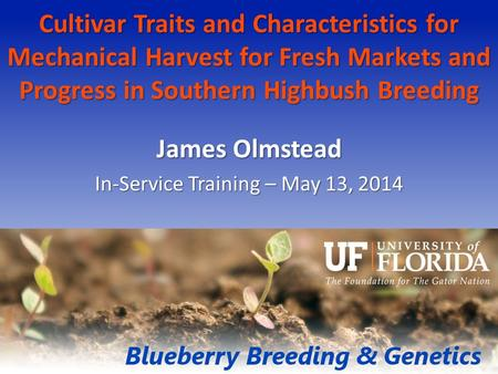 Cultivar Traits and Characteristics for Mechanical Harvest for Fresh Markets and Progress in Southern Highbush Breeding James Olmstead In-Service Training.