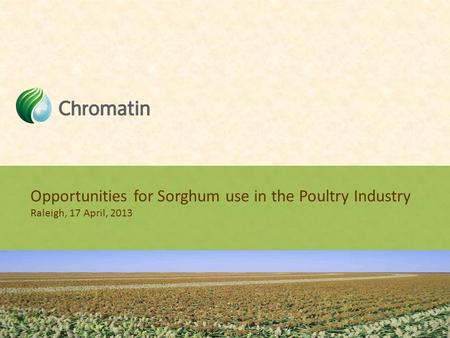 Opportunities for Sorghum use in the Poultry Industry Raleigh, 17 April, 2013.