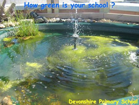 How green is your school ? Devonshire Primary School.
