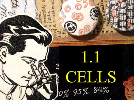 1.1 CELLS. WHAT ARE CELLS?????? Cells are the basic unit of life All living things are made up of cells Each cell contains small parts called ORGANELLES.