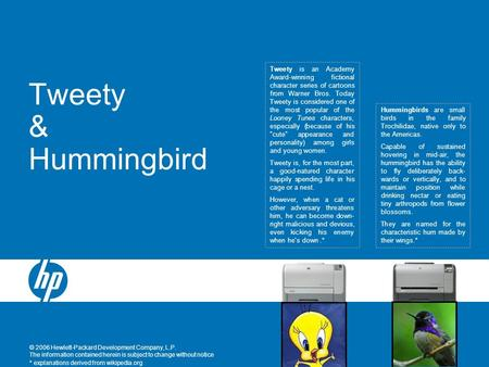 © 2006 Hewlett-Packard Development Company, L.P. The information contained herein is subject to change without notice Tweety & Hummingbird Hummingbirds.