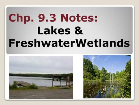 Chp. 9.3 Notes: Lakes & FreshwaterWetlands. Main idea #1 Fresh water can be found in standing water bodies called lakes or wetlands.