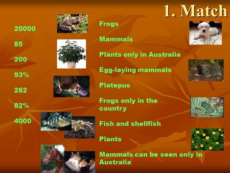 1. Match Frogs Mammals Plants only in Australia Egg-laying mammals Platepus Frogs only in the country Fish and shellfish Plants Mammals can be seen only.