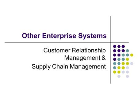 Other Enterprise Systems Customer Relationship Management & Supply Chain Management.