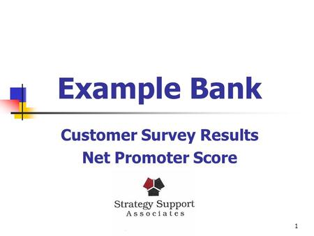 1 Example Bank Customer Survey Results Net Promoter Score.
