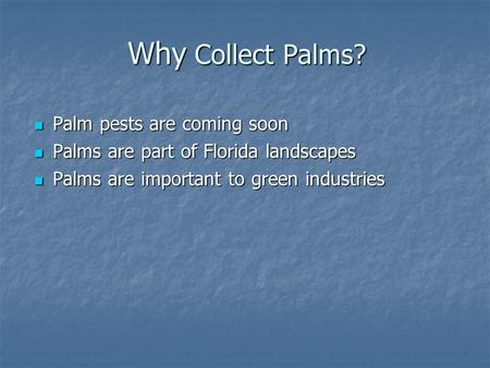 Why Collect Palms? Palm pests are coming soon
