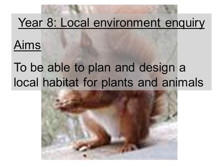 Year 8: Local environment enquiry Aims To be able to plan and design a local habitat for plants and animals.