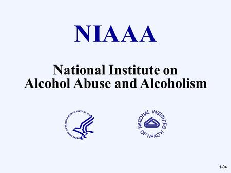 National Institute on Alcohol Abuse and Alcoholism 1-04.