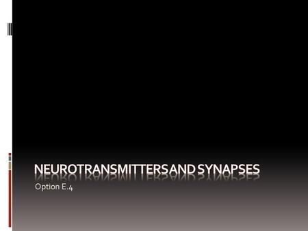 Option E.4. Assessment Statements  E.4.1 State that some presynaptic neurons excite postsynaptic transmission and others inhibit postsynaptic transmission.