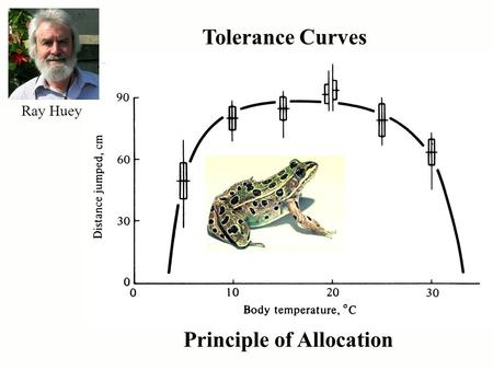 Tolerance Curves Principle of Allocation Ray Huey.