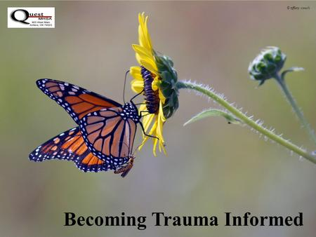 Becoming Trauma Informed © tiffany couch. Trauma Informed Care Trauma-informed care is both a philosophy and a way of providing services based on compelling.