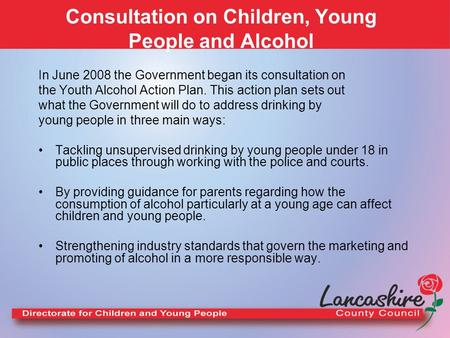 Consultation on Children, Young People and Alcohol In June 2008 the Government began its consultation on the Youth Alcohol Action Plan. This action plan.