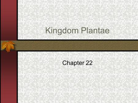Kingdom Plantae Chapter 22. Plants are divided into 2 categories: Vascular – have internal tissues to conduct nutrients and water. Nonvascular - do not.