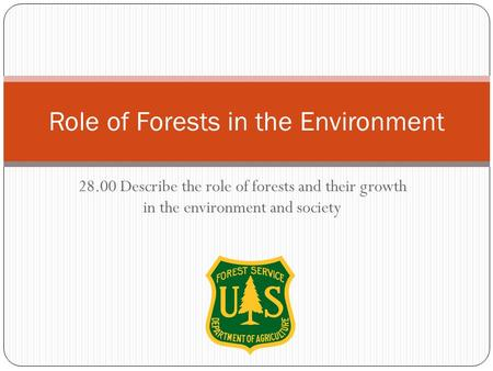 Role of Forests in the Environment