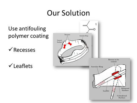 Our Solution Use antifouling polymer coating Recesses Leaflets.